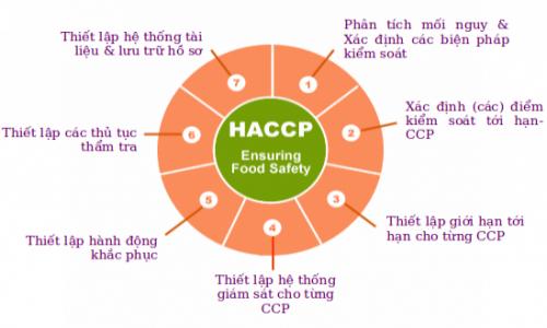 7 NGUYÊN TẮC CỦA HACCP